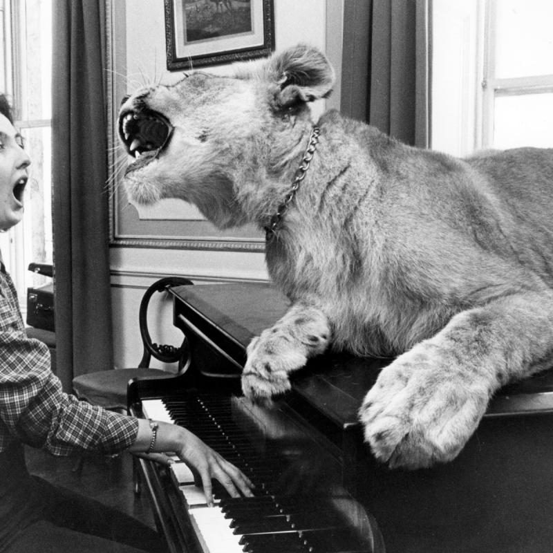 Mandatory Credit: Photo by Voller Ernst/John Drysdale/imageBROKER/Shutterstock (9751330a) Loewe sits on a piano and sings together with the piano player, England, Great Britain VARIOUS